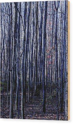 Treez Blue Wood Print