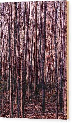 Treez Red Wood Print