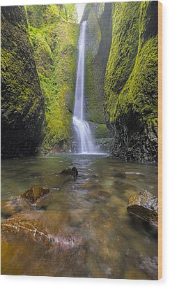 Trek To Lower Oneonta Falls Wood Print by David Gn
