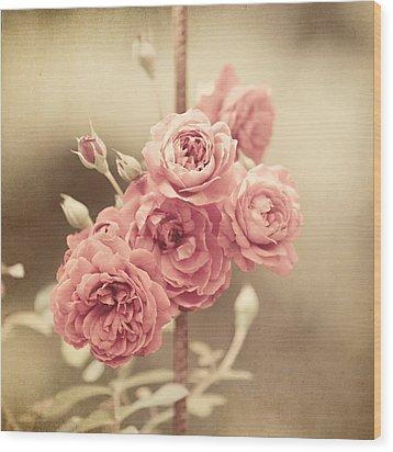 Trellis Roses Wood Print by Lisa Russo