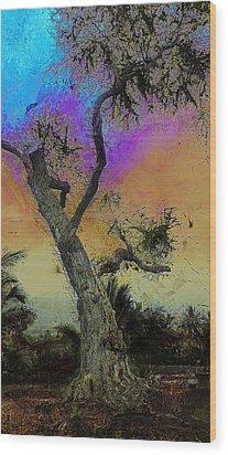 Wood Print featuring the photograph Trembling Tree by Lori Seaman