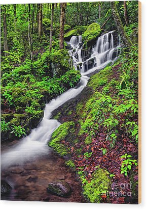 Tremont Area Waterfall Wood Print by Madonna Martin