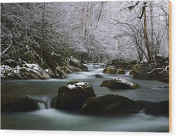 Tremont Treasure Great Smoky Mountains National Park Wood Print