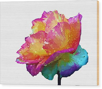 Wood Print featuring the photograph Tri Color Rose by Joseph Frank Baraba