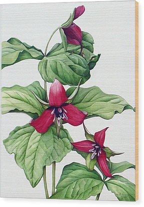 Wood Print featuring the painting Trillium Trio by Margit Sampogna