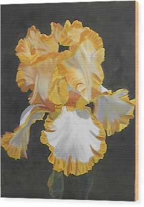 Trimmed In Yellow 2 Wood Print by Robert Tower