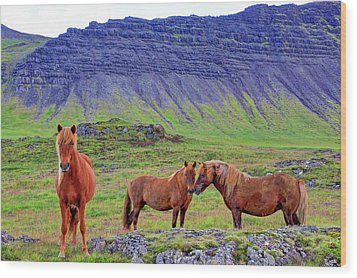 Wood Print featuring the photograph Triple Horses by Scott Mahon