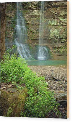 Tripple Falls In Springtime Wood Print by Iris Greenwell