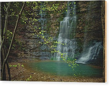 Tripple Falls Wood Print by Iris Greenwell