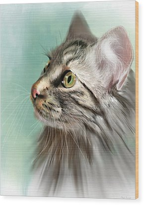 Trixie The Maine Coon Cat Wood Print by Angela Murdock