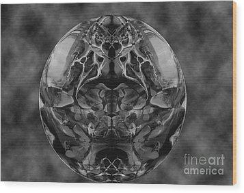 Trompe L'oiel Wood Print by Dan Cope