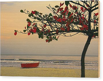 Wood Print featuring the photograph Tropical Beach Sunset by Kim Wilson