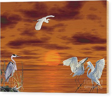 Tropical Birds And Sunset Wood Print by Terri Mills