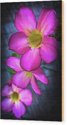 Tropical Bliss Wood Print by Karen Wiles