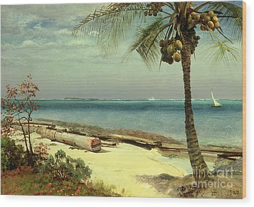 Tropical Coast Wood Print by Albert Bierstadt