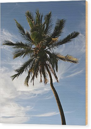 Tropical Coconut Palm Tree Maui Hawaii Wood Print by Pierre Leclerc Photography