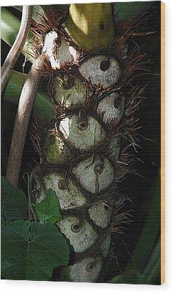 Tropical  Eyes Wood Print by Lori Mellen-Pagliaro
