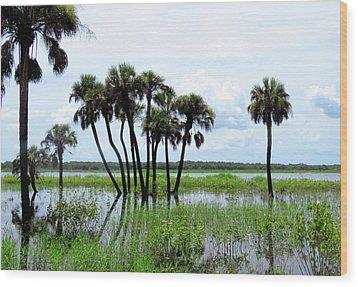 Tropical Flooding Wood Print by Rosalie Scanlon