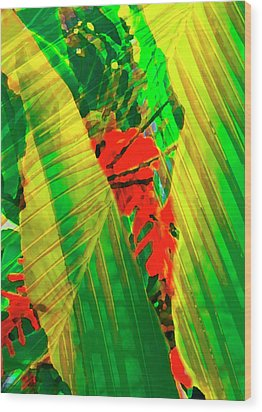 Tropical Fusion Wood Print by Stephen Anderson
