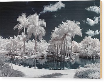 Tropical Paradise Infrared Wood Print by Adam Romanowicz