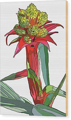 Tropical Reds Wood Print by Jamie Downs