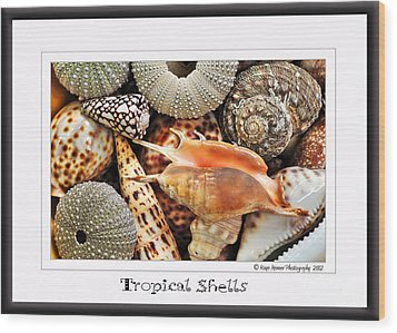 Tropical Shells... Greeting Card Wood Print by Kaye Menner