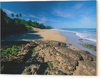 Tropical Shoreline Borinquen Point Puerto Rico Wood Print by George Oze