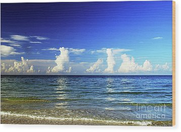 Wood Print featuring the photograph Tropical Storm Brewing by Gary Wonning