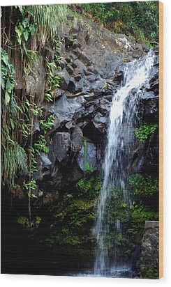 Wood Print featuring the photograph Tropical Waterfall by Gary Wonning