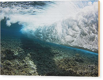 Tropical Wave Curl Wood Print by Dave Fleetham - Printscapes