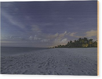 Tropical Winter Wood Print by Christopher L Thomley