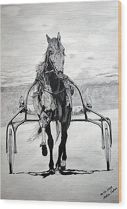 Wood Print featuring the drawing Trotter by Melita Safran