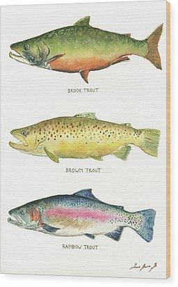 Trout Species Wood Print by Juan Bosco