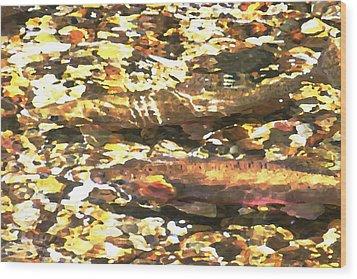 Trout Stream Wood Print by Greg Hammond