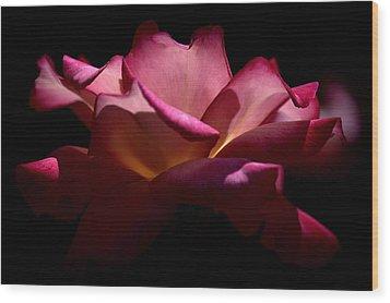 Wood Print featuring the photograph True Beauty by Lori Seaman