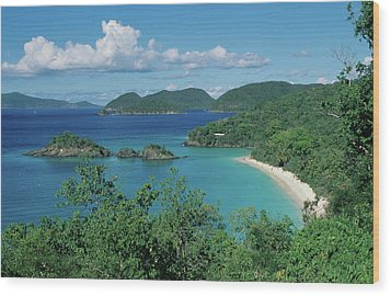 Trunk Bay And Beach Wood Print