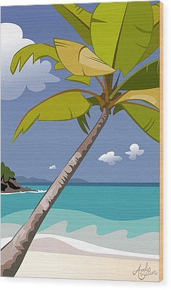 Trunk Bay Wood Print by Andy Bauer