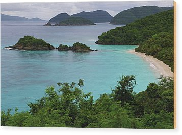 Wood Print featuring the photograph Trunk Bay At U.s. Virgin Islands National Park by Jetson Nguyen