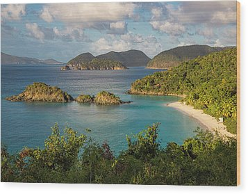 Wood Print featuring the photograph Trunk Bay Morning by Adam Romanowicz