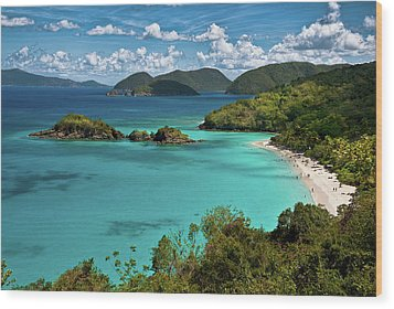 Trunk Bay Overlook Wood Print by Harry Spitz
