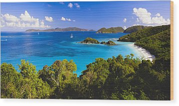 Trunk Bay Panorama Wood Print by George Oze