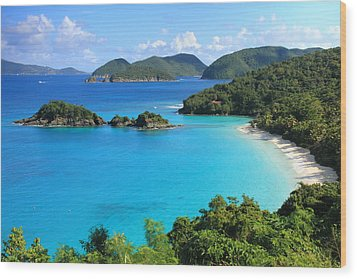 Trunk Bay St. John Wood Print