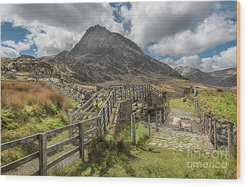Wood Print featuring the photograph Tryfan And The Ogwen Valley by Adrian Evans