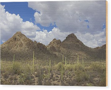 Tucson Mountains Wood Print by Elvira Butler