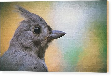Tufted Titmouse Wood Print by Diane Giurco