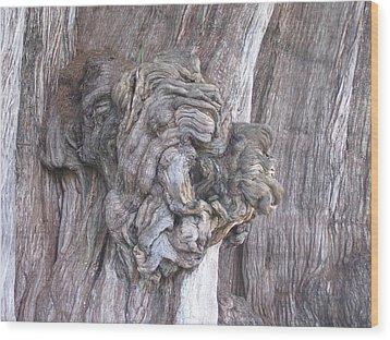Tule Tree Spirit Wood Print by Michael Peychich