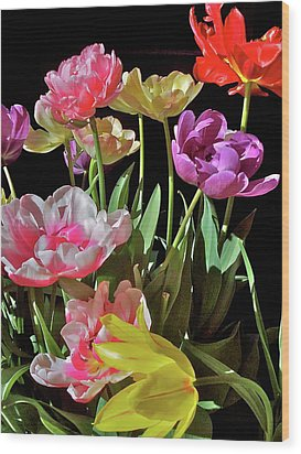 Wood Print featuring the photograph Tulip 8 by Pamela Cooper