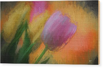 Tulip Abstraction Wood Print