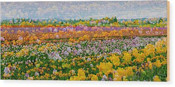 Wood Print featuring the photograph Tulip Dreams by Tom Vaughan