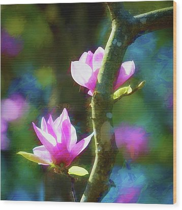 Wood Print featuring the photograph Tulip Tree by James Barber